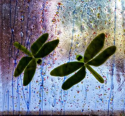 Vitrail avec libellules vertes